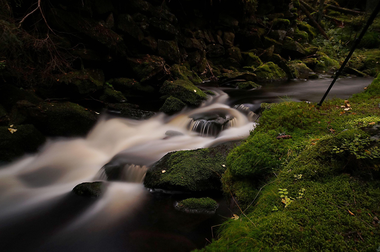 Filipohuťský potok