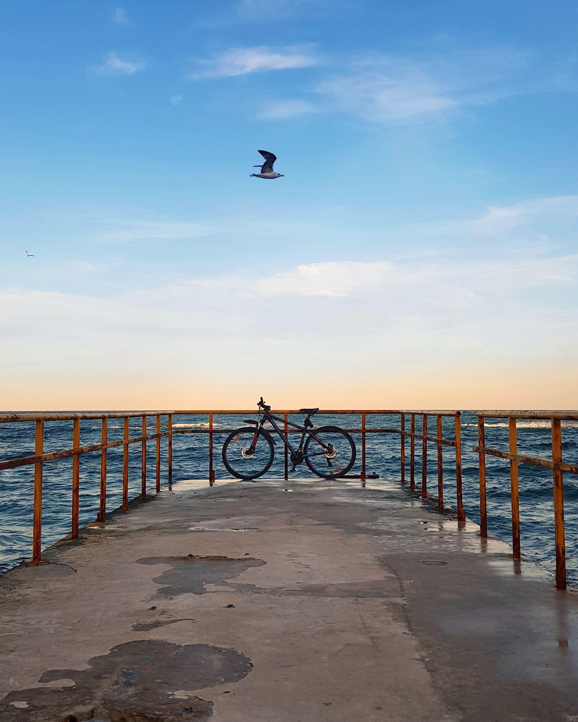 Bicycle trip 2020